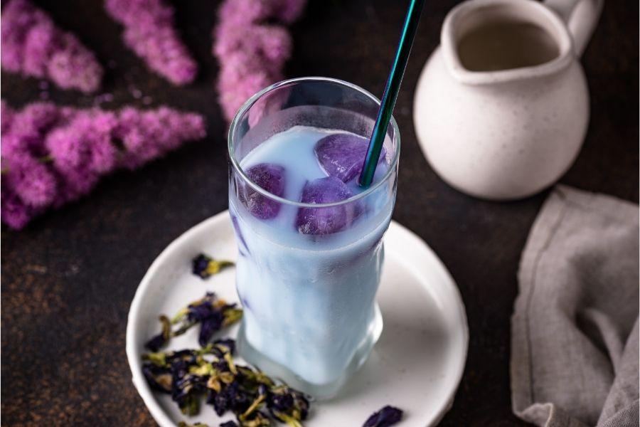 Trà sữa hoa đậu biếc